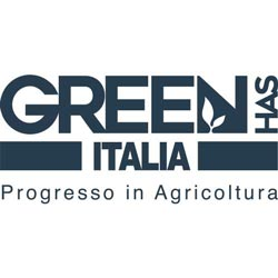Green Has | Agenzia di marketing strategico