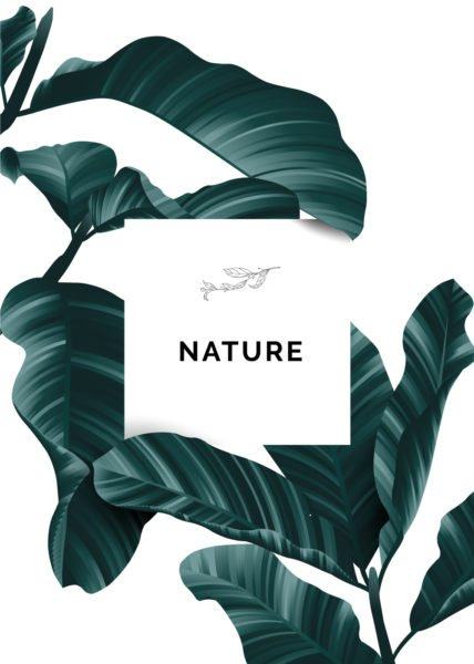 trend-visual-2021-natura-design